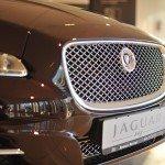 017 День открытых дверей Jaguar